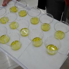Il tour dell'olio EVO promosso dal MIPAAF con i sapori della Murgia