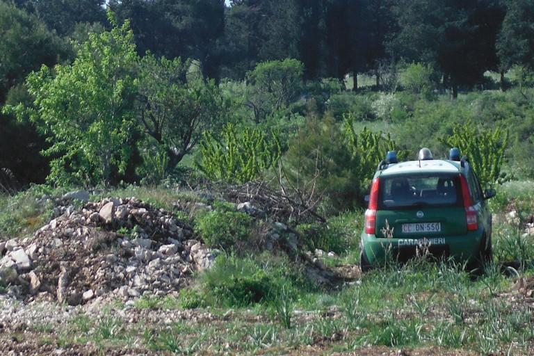 Agricoltore minervinese denunciato dai Carabinieri Forestali