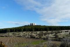 Turismo, «la Puglia è una regione molto dinamica»