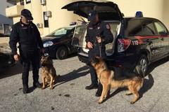 Nuovo giro di vite dei carabinieri: due arresti, una denuncia e droga sequestrata