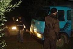 """Razzie nelle campagne di Bari e Bat, CIA Levante: """"Serve l'Esercito"""""""