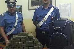 Scacco al narcotraffico, arrestato a Minervino Murge un operaio