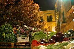 Oltre 39 mila stranieri occupati nell'agricoltura pugliese