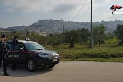 Smerciava hashish a Minervino Murge, arrestato un pregiudicato