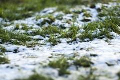 Arriva il vento dalla Siberia, possibili nevicate sul territorio murgiano