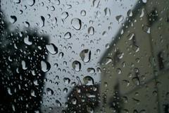 Maltempo in arrivo: pioggia e vento da Nord e per i primi di gennaio arriva anche la neve