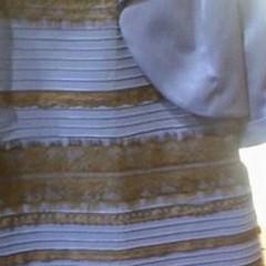 Dal web: «Di che colore è questo vestito?»