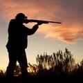 Caccia, in Puglia vietato cacciare sino al 24 ottobre