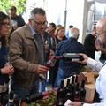 "Nel weekend  ""Cantine aperte "" anche a Minervino Murge"