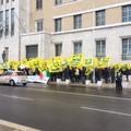 Protesta Coldiretti Puglia: in fumo olivicoltura pugliese 317mln euro persi e 1mln giornate lavoro azzerate