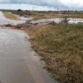 Il maltempo piega l'agricoltura, Coldiretti chiede lo stato di calamità