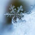 Scende la neve in città, scuole chiuse oggi e domani