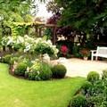 Giardini ed esterni di condominio, arriva il bonus verde