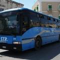 """Trasporti BAT, M5S: """"Ancora disagi per gli studenti e lavoratori pendolari di Canosa, Spinazzola e Minervino"""""""