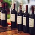 ProWein, il bilancio della Puglia del vino in Germania