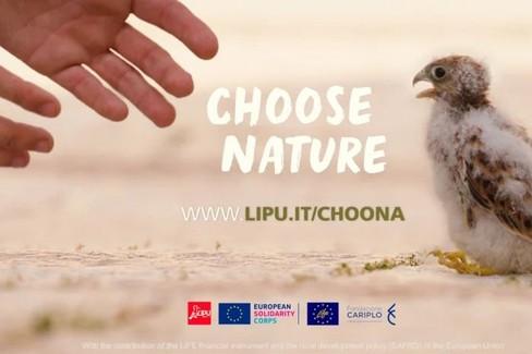 progetto Lipu