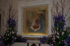 La Madonna del Sabato veglia sulla sua Minervino
