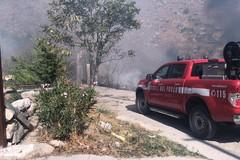Incendio a Minervino, bosco e macchia mediterranea devastate dalle fiamme