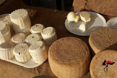 La Sagra del fungo cardoncello nel mirino dei Forestali: sequestrati 350kg di alimenti
