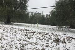 Maltempo, ancora allerta neve e vento