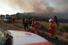 Incendio in territorio di Minervino, 150 ettari distrutti