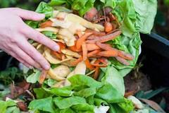 Trattamento frazione organica, per Minervino ristoro di 25mila euro