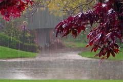 Ancora vento forte e precipitazioni per le prossime 24 ore