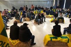 Puglia, secondo posto nazionale per numero di agricoltori under 35