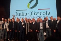 """Importante novità: AssoPr.Oli Bari e Bat aderisce a """"Italia Olivicola"""""""