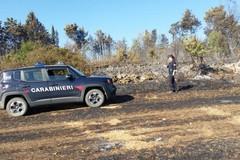 Individuato il presunto responsabile dell'incendio al bosco di Acquatetta