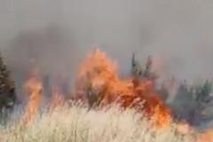 Incendio Bosco di Acquatetta, circa 20 gli ettari distrutti