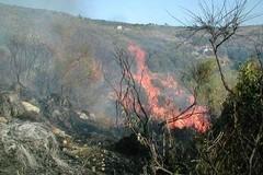 Stato di grave pericolosità per gli incendi boschivi su tutta la Puglia.