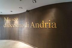 """Riapre al pubblico il Museo Diocesano di Andria """"San Riccardo"""""""