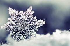 Da domani in Puglia arriva il gelo