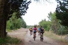 Parco dell'Alta Murgia, in una piattaforma i servizi per il turismo ecosostenibile
