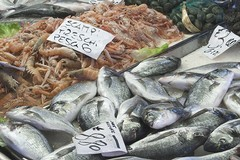 Ritorno in palestra e pesce per rimettersi in forma. Coldiretti: «Attenzione all'etichetta»