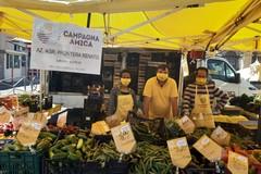 Gelate in Puglia, perdita fino all'80% di ciliegie