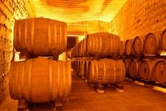 """Architetture di Vino, l'Ordine degli Architetti alla scoperta delle """"cantine"""""""