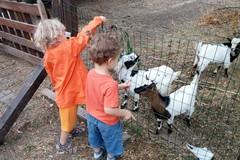 Vacanze in Puglia, l'invito di CIA: «Venite negli agriturismi»