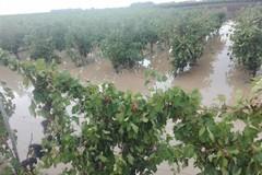 Ancora precipitazioni su tutta la Puglia, anche a carattere di rovescio per sabato 6 ottobre