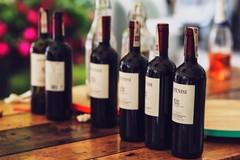 Settore del vino in difficoltà, il Covid affossa le enoteche