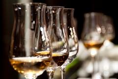 Alla scoperta del vino e del cibo delle Murge aspettando Radici del Sud 2020