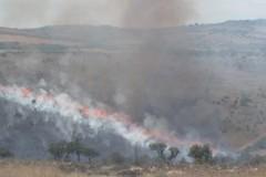 Ancora fiamme sul territorio murgiano, distrutti 350 ettari fra Minervino e Andria
