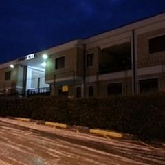 Ruba olive in contrada Chianche: arrestato un 33enne
