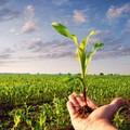 Recovery Plan, un milione di posti di lavoro green