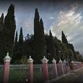 Misure e cautele per l'accesso al cimitero civico di Minervino Murge