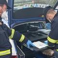 Riunione delle forze di Polizia: controlli rigorosi per le misure anticovid