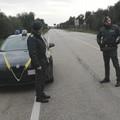 Forze di Polizia, 98 persone sanzionate su oltre 1400 controlli
