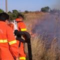 Applicazione pianificata del fuoco prescritto. Sì del Consiglio regionale