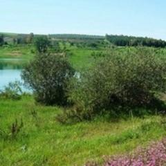 Rischio idrogeologico, Amati: «Situazione preoccupante, urge manutenzione»
